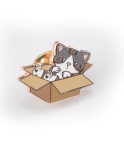 Kitty-in-a-box pin